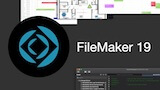 FileMaker 19 article